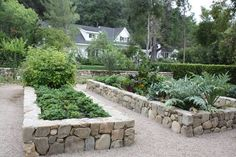 Stone bordered vegetable garden.
