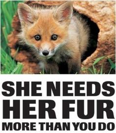 Animal Rights - Animal Rights Photo (24284206) - Fanpop