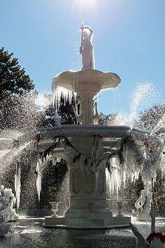 Winter In Savannah, GA