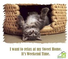 I want to relax at my sweet home, It's the Weekend time. Enjoy your Weekend with Jeni Construction on booking flats, apartments and houses.