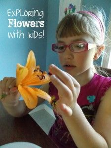 Exploring Flowers with Kids! Awesome Montessori Inspired activities! Lots of fun ideas!
