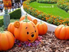 Tokyo Disneyland – Halloween 1 Halloween Time At Disneyland, Tokyo Disneyland, Disney Halloween, Scary Halloween, Disney Vacations, Disney Trips, Disney Parks, Disney Love, Colors
