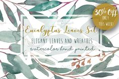 Elegant Watercolor Eucalyptus Leaves by MaraquelaStudio on @creativemarket