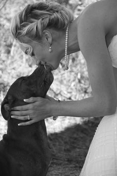 15 Times Pit Bulls Made Weddings Infinitely Better. Weddings bring out Nola's best, affectionate.