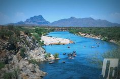 Salt River, Arizona. The COOLEST thing I've ever done!