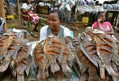 Kenyan food, farming and landscapes