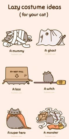 pusheen how to make your cat happy - Buscar con Google