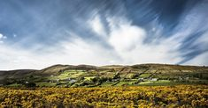 Ireland | © Christian_Birkholz/Pixabay
