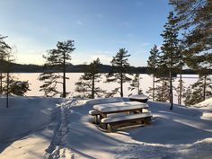 Archipelago, Four Seasons, Ecology, Finland, Sustainability, Beautiful Places, Villa, Hiking, Outdoors
