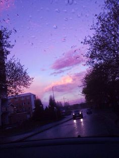 Stunning purple aesthetic. Love the droplets of rain against the purple/blue/orange sunset and the outline of the trees.