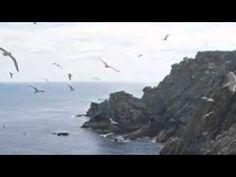 ▶ Tengo miedo a la muerte, de Aurelio González Ovies - YouTube