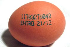 Cosa indicano tutte quelle lettere e quei numeri presenti sul guscio delle uova?