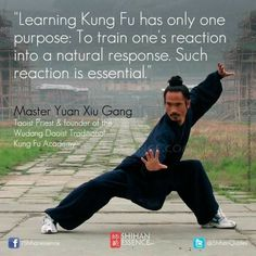 Aside from basketball or boxing, another sport you can try is mixed martial arts. What is mixed martial arts? Martial Arts Quotes, Kung Fu Martial Arts, Chinese Martial Arts, Martial Arts Training, Mixed Martial Arts, Wing Chun Martial Arts, Shaolin Kung Fu, Karate, Warrior Spirit