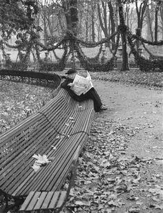 Le jardin du Luxembourg ; Homme lisant sur un banc Date de prise de vue : 1928-1930 Auteur : André Kertész (1894-1985)