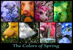 The Colors of Spring by LilleahWest on DeviantArt