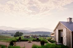 Charlottesville Wedding Venue Pippin Hill Farm & Vineyards