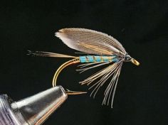 Classic wet fly by Dennis Collier - http://globalflyfisher.com/gallery/