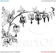 stylized bleeding heart flower drawing | ... White Border of Bleeding Heart Flowers - Royalty Free Vector Clipart