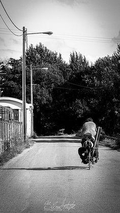 Bilou©2013