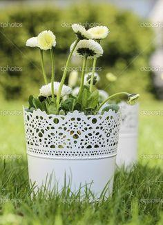 čerstvý jarní dekorace pro prvního přijímání, nebo první svaté - Stock obrázek: 24886203 Planter Pots, Stock Photos, Spring, Decor, Decorating, Inredning, Interior Decorating, Deck, Plant Pots