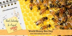 World Honey Bee Day - Third Saturday in August Honey Bee Hives, Honey Bees, National Day Calendar, Bee Do, World Days, National Days, Wildflower Seeds, Bee Keeping, Leather Craft
