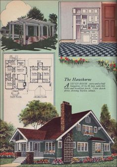 vintage house illustration - elevation and floor plan, blue with white trim
