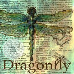 flying shoes art studio: DRAGONFLY