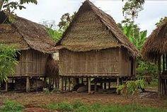 Znalezione obrazy dla zapytania amazonian village houses