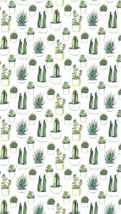 cactus wallpaper - Google zoeken