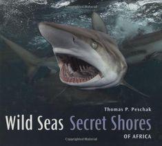 Wild Seas, Secret Shores of Africa by Thomas Peschak http://www.amazon.com/dp/1770075909/ref=cm_sw_r_pi_dp_3u2Pub12D5DJ8