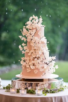 Gorgeous Cherry Blossom Wedding Cake | Photo: Images by Berit, Inc. View More:  http://www.insideweddings.com/weddings/tented-backyard-wedding-with-equestrian-details-at-a-family-farm/931/