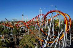 Knott's Berry Farm- roller coasters.