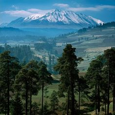 Nevado de Toluca. Mexico state. Trees. Mountains. I see why he misses home, it's beautiful...