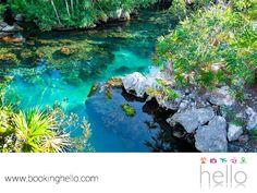 VIAJES PARA JUBILADOS TODO INCLUIDO AL CARIBE. El Parque Ecológico Xpu-Há, es uno de los atractivos turísticos imperdibles del Caribe mexicano. Cuenta con aguas transparentes, para disfrutar nadando o para atreverse a bucear y asombrarse con la sorprendente vista de la fauna marina. En Booking Hello, te invitamos a tener las vacaciones que siempre soñaste, adquiriendo alguno de nuestros packs. #HelloExperience