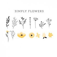 Flower plano e Colletion folha Vetor grátis