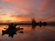 Driftwood Eco-tours - Guided 4 Wheel Drive & Kayaking tours