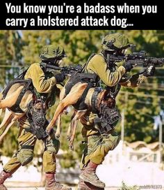 Holstered Attack Dogs.