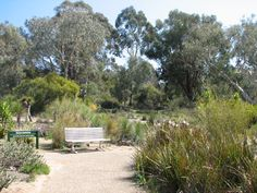 Do you find your organic garden growing properly? Want to learn how to help it grow better? If you are ready, then you have come to the right place. Gravel Garden, Garden Paths, Garden Landscaping, Australian Garden Design, Australian Native Garden, Farm Gardens, Native Gardens, Flora Garden, Organic Gardening