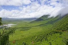 Africa, Tanzania, Ngorongoro crater a view of the geological formation - PhotoStock-Israel/Moment/Getty Images