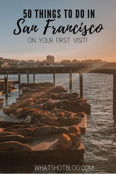 Click to find out the top 50 things to do in San Francisco on your first visit! Its a huge city with so many things to see and do so heres the down low on whats you can expect from some of the best restaurants and museums in San Francisco. Add these to your West Coast bucket list! #whatshotblog #travelsanfrancisco #sanfran #sanfrancisco #westcoast #california #travelusa