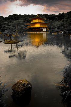 chikuri:  nipponia-nippon:powerpopeye:gkojax:j-p-g:  Pure Gold (via reflective perspicacity)