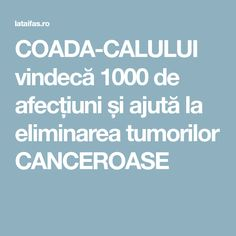 COADA-CALULUI vindecă 1000 de afecțiuni și ajută la eliminarea tumorilor CANCEROASE Sciatica, Alter, Health Fitness, Healthy, Guacamole, Medicine, Plant, Health And Fitness, Gymnastics