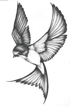 Swallow Tattoo Design, Swallow Bird Tattoos, Tattoo Design Drawings, Art Drawings Sketches Simple, Bird Drawings, Pencil Art Drawings, Tattoo Sketches, Animal Drawings, Tattoo Designs