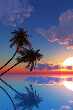 A Beautiful Tropical sunset in the South Pacific #travel #dreamdestinations #photography
