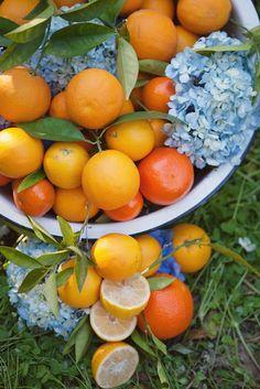 citrus orange, lemon yellow, and blue wedding colors...I think I actually want fruit too.