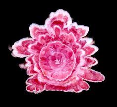 Rhodochrosite Flower from Capillitas Mine Catamarca, Argentina #Rhodochrosite #Minerals photo: Allison Herfindahl