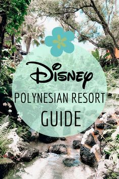 Guide to Disney Polynesian Resort in Orlando, Florida. This guide contains pool information, rooms, dining, and more at the Polynesian Resort. Disney World Vacation Planning, Disney Cruise Tips, Disney World Trip, Disney World Resorts, Disney Vacations, Disney Trips, Vacation Trips, Vacation Travel, Family Vacations