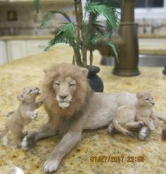 JUST-MOVED-SALE-NEW-MAGNIFICENT-LION-AND-CUBS-OOAK-LINDA-FISHER-SO-REALISTIC