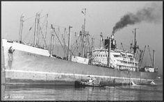 ss Limburg, aangemonsterd van 7-4-1962 ~ 29-1-1963 Rotterdam, Cruise, Ships, Ocean, River, World, Artwork, Steam Boats, Nostalgia