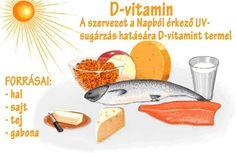 D-vitamin | Socialhealth